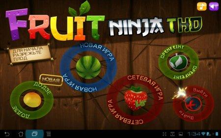 Fruit Ninja THD /1.9.1