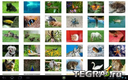 Ultimate Jigsaw Puzzle v.2.2