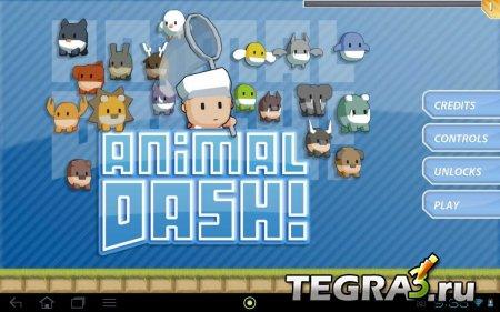 Animal Dash