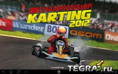 иконка Сhampionship Karting 2012