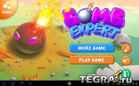 Bomb Destroyer (Бомба эксперт) v1.0.7