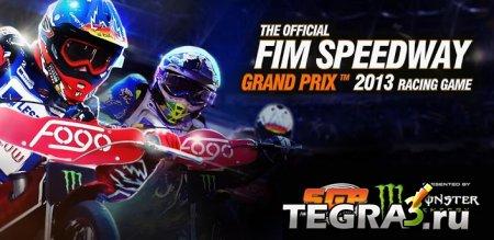 иконка Official Speedway GP 2013