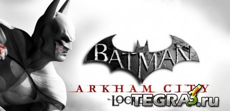 Batman: Arkham City Lockdown ~2