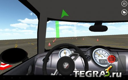Slalom Racing Simulator v.1.0