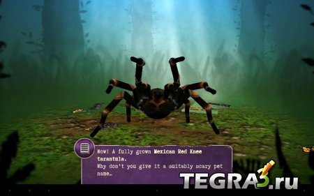 Real Scary Spiders v1.3.01 [много денег и алмазов]