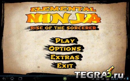 Нинздя Стихии (Elemental Ninja)